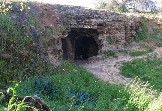Afeka Caves